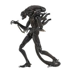 Neca Aliens Actionfigur Ultimate Alien Warrior (Brown) (23 cm)