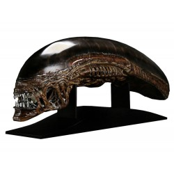 Alien Die Wiedergeburt Replik 1/1 New Warrior Kopf (90 cm)