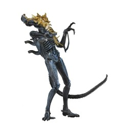 Neca Aliens Actionfigur Serie 12 Battle Damaged Alien Warrior (Blue) (23 cm)