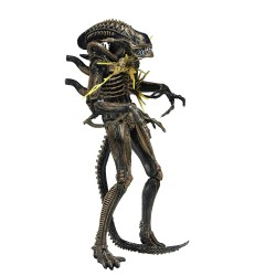 Neca Aliens Actionfigur Serie 12 Battle Damaged Alien Warrior (Brown) (23 cm)