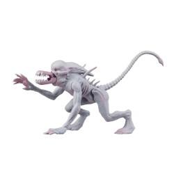 Neca Alien & Predator Classics Actionfigur Neomorph Alien (14 cm)