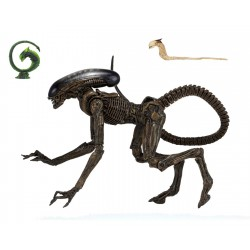 Neca Alien 3 Actionfigur Ultimate Dog Alien (23 cm)