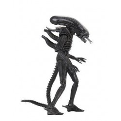 Neca Alien 40th Anniversary Serie 3 Actionfigur Xenomorph (Regular) (18 cm)