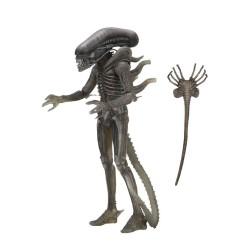 Neca Alien 40th Anniversary Serie 4 Actionfigur Alien (18 cm)