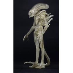 Neca Aliens Actionfigur Serie 7 Concept Alien 1979 (23 cm)